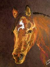 horse pst
