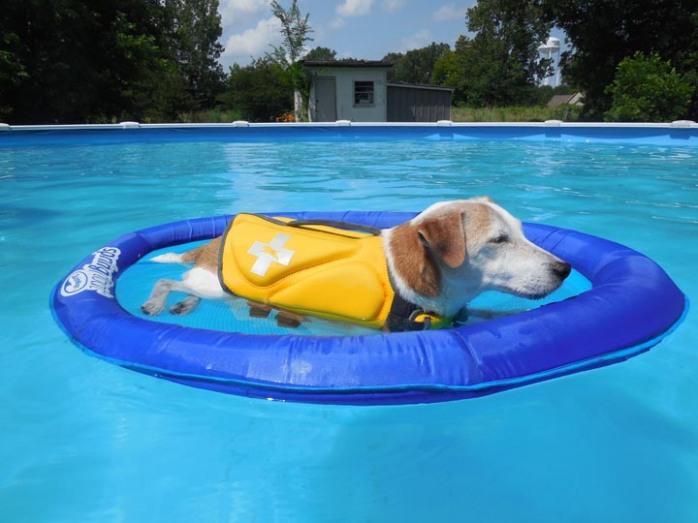Tim rafting