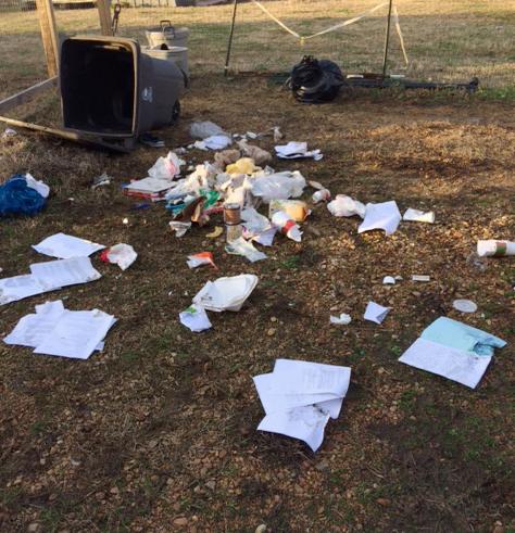 Trash mess